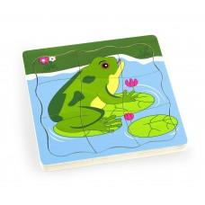 Puzzle - ako rastie žabka